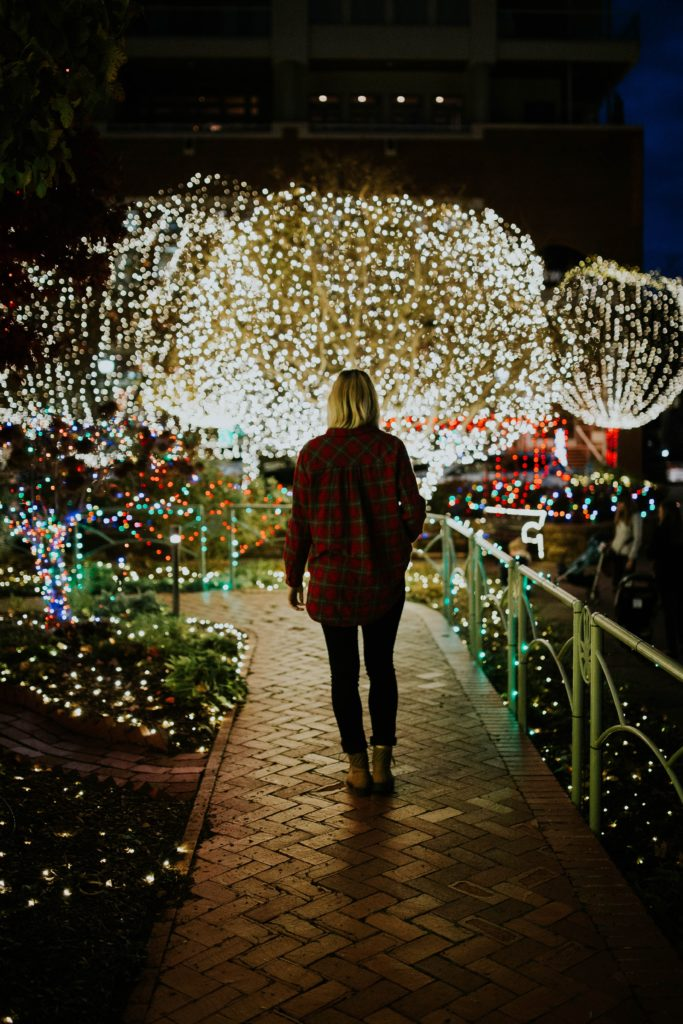 Person walking down a path lined with christmas lights and displays