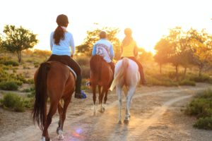 Three horses and their riders follow a trail at sunset.