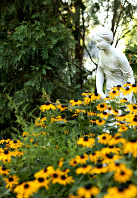 White dtatue of graceful woman in patch of yellow black-eyed susans