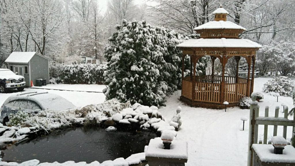 Pond and gazebo surrounded by snow covered ground and trees